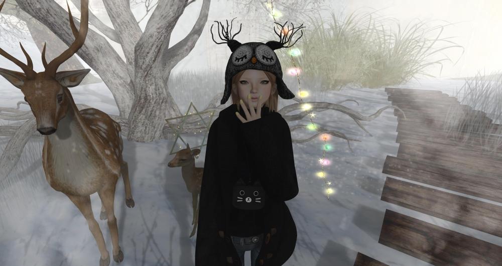 Snapshot_52464