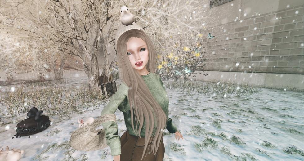 snapshot_55591